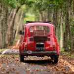 Fiat and trees